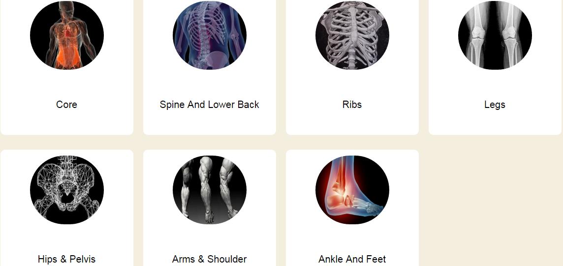 DanceBible_anatomy